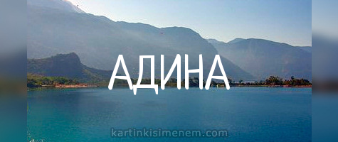 АДИНА
