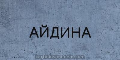 АЙДИНА