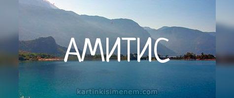 АМИТИС