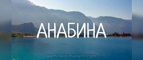 АНАБИНА