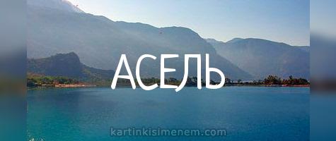 АСЕЛЬ