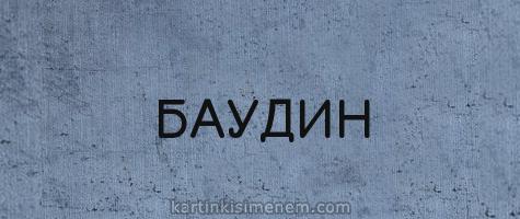 БАУДИН