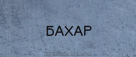 БАХАР