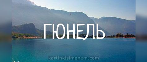 ГЮНЕЛЬ