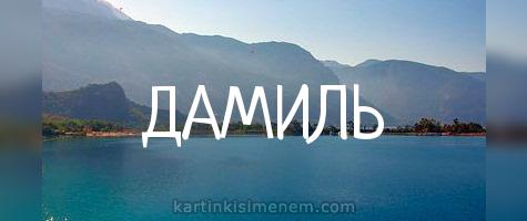 ДАМИЛЬ