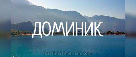 ДОМИНИК