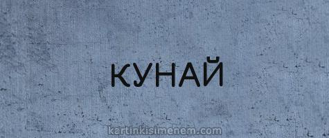 КУНАЙ