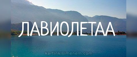 ЛАВИОЛЕТАА