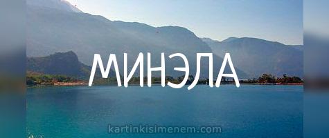 МИНЭЛА
