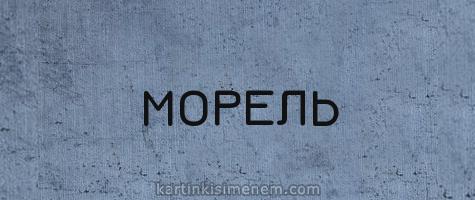МОРЕЛЬ