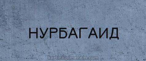 НУРБАГАИД