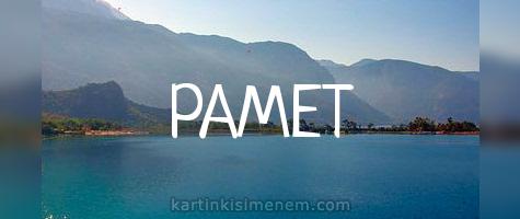 РАМЕТ