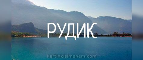РУДИК
