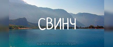 СВИНЧ