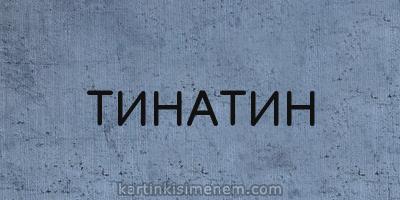 ТИНАТИН