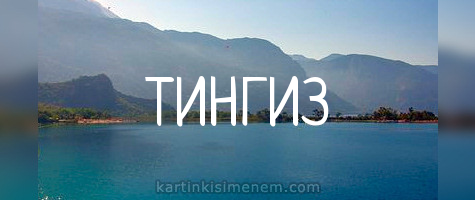 ТИНГИЗ