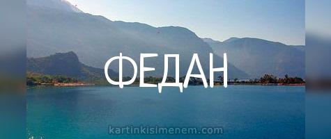 ФЕДАН