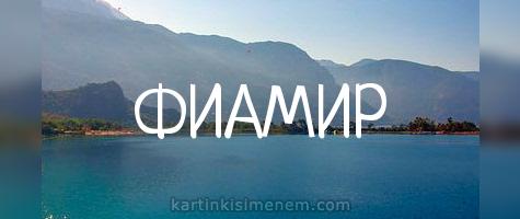 ФИАМИР