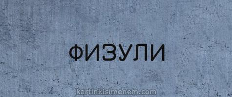 ФИЗУЛИ