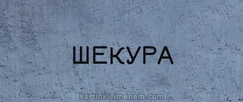 ШЕКУРА