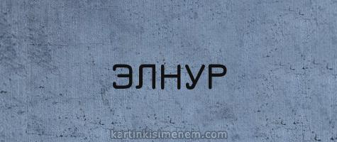 ЭЛНУР