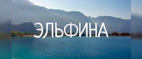 ЭЛЬФИНА