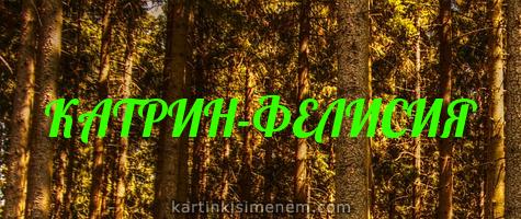 КАТРИН-ФЕЛИСИЯ