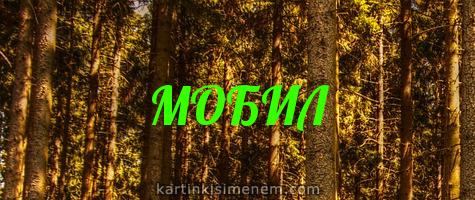 МОБИЛ