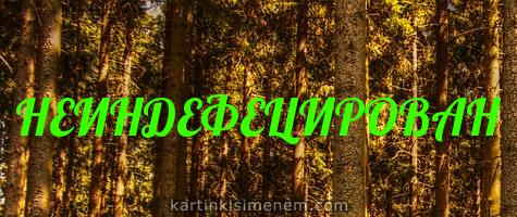 НЕИНДЕФЕЦИРОВАН