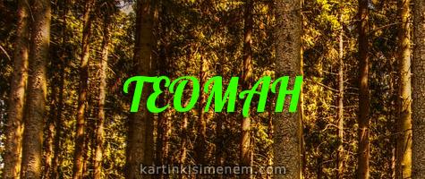 ТЕОМАН