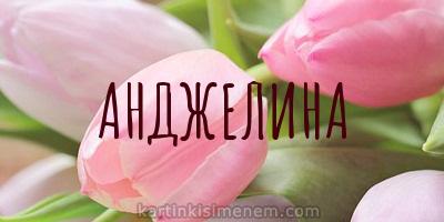 АНДЖЕЛИНА