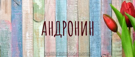 АНДРОНИН