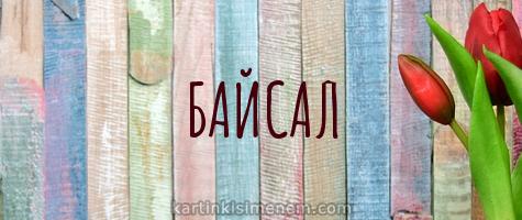 БАЙСАЛ