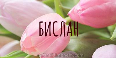 БИСЛАН