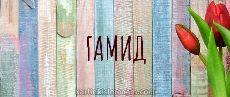 ГАМИД