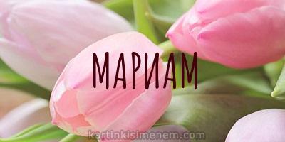 МАРИАМ