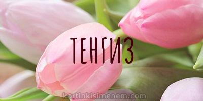 ТЕНГИЗ