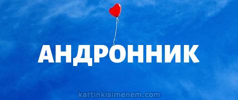 АНДРОННИК