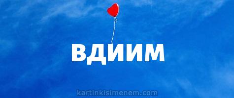 ВДИИМ