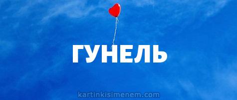 ГУНЕЛЬ