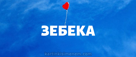 ЗЕБЕКА