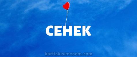 СЕНЕК