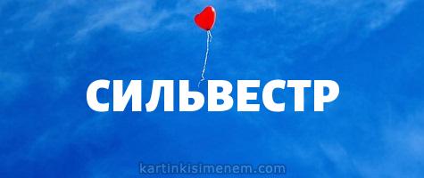 СИЛЬВЕСТР