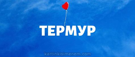 ТЕРМУР