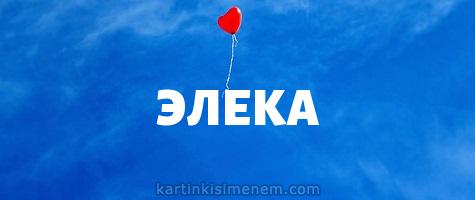 ЭЛЕКА